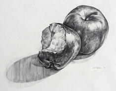 Fruit Transition Drawing